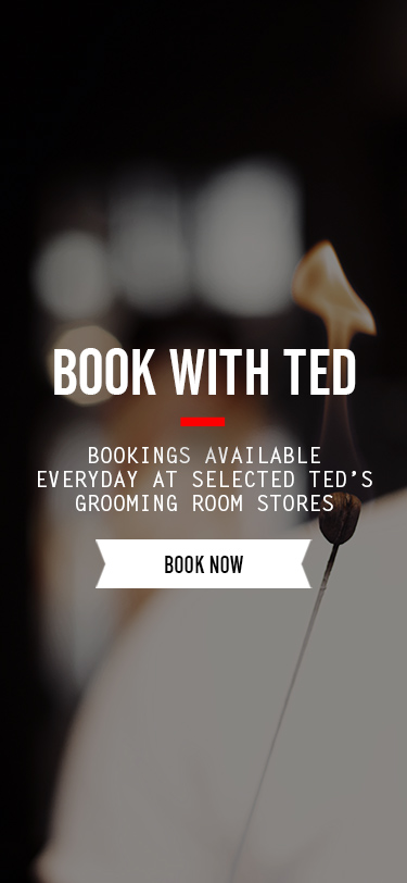 Book With Ted
